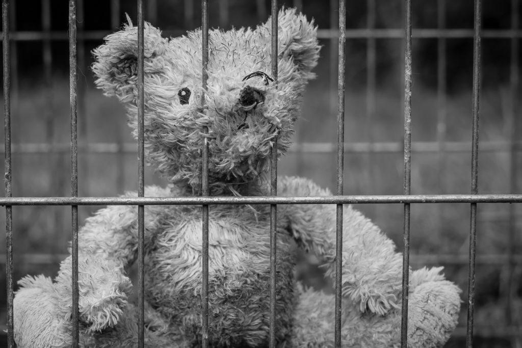 THC legal - Teddy
