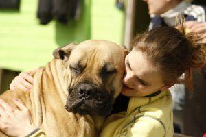 CBD bei Tieren - Frauchen mit Dogge